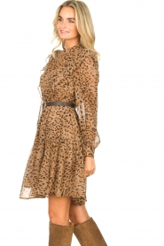 Kocca |  Dress with panther print Ranuncolo | brown  | Picture 5