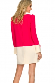 ELISABETTA FRANCHI |  Two-coloured dress Brianna | pink  | Picture 5