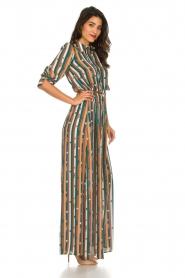 ELISABETTA FRANCHI |  Striped maxi dress Kelsi | multi  | Picture 4