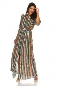 ELISABETTA FRANCHI |  Striped maxi dress Kelsi | multi  | Picture 2