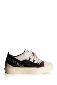 ELISABETTA FRANCHI |  Leather sneakers Averi | white  | Picture 1