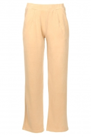JC Sophie |  Pants Earth | camel  | Picture 1