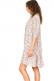 Notes Du Nord |  Ruffle dress with floral print Violet | white  | Picture 6