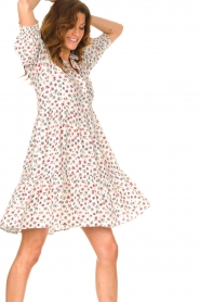 Notes Du Nord |  Ruffle dress with floral print Violet | white  | Picture 4