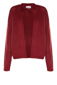 Les Favorites |  Knitted cardigan Robbie | red  | Picture 1