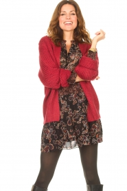 Les Favorites |  Knitted cardigan Robbie | red  | Picture 4