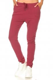 Les Favorites |  Sweatpants Bente | red  | Picture 4