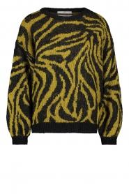 Aaiko |  Zebra print sweater Anna | green  | Picture 1