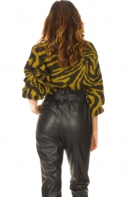 Aaiko |  Zebra print sweater Anna | green  | Picture 7