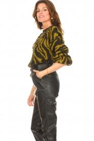 Aaiko |  Zebra print sweater Anna | green  | Picture 6
