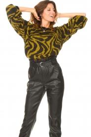 Aaiko |  Zebra print sweater Anna | green  | Picture 2