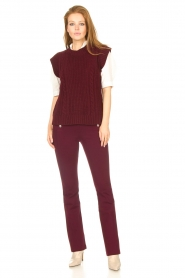 Aaiko |   Trousers with decorative buttons Solla | bordeaux  | Picture 2