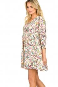 Louizon |  Floral dress Gomes | multi  | Picture 5