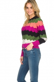 Essentiel Antwerp |  Zigzag sweater Susan | multi  | Picture 5