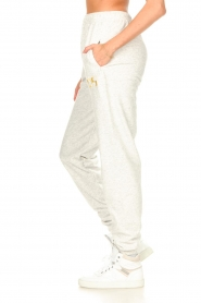 Dolly Sports |  Sweatpants Team Dolly | grey  | Picture 6