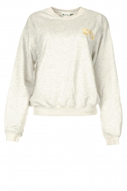 Dolly Sports    Basic sweater Team Dolly   grey    Picture 1