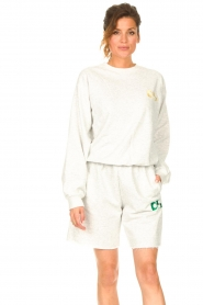 Dolly Sports    Basic sweater Team Dolly   grey    Picture 4