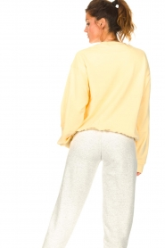 Dolly Sports |  Basic sweater Team Dolly | yellow  | Picture 7