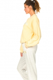 Dolly Sports |  Basic sweater Team Dolly | yellow  | Picture 6