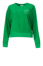 Dolly Sports |  Sweater with towel fabric Classic DS | green  | Picture 1