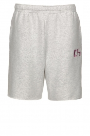 Dolly Sports |  Sweatshorts Team Dolly | grey  | Picture 1