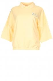 Dolly Sports | Basic trui met hemdkraag William | geel  | Afbeelding 1