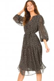 JC Sophie |  Midi dress with print Juno | cobalt  | Picture 6