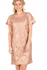 Rosemunde | Semi-sheer jurk Megan | roze/goud metallic  | Afbeelding 2