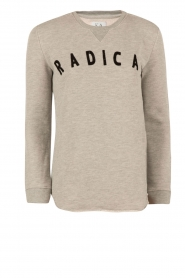 Sweater Radical | grijs