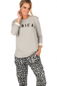 Sweater Radical | grey