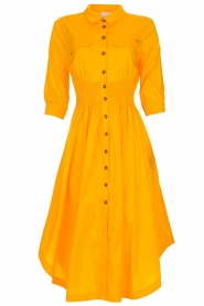 AnnaRita N |  Dress with smocked waist Svea | yellow  | Picture 1
