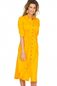 AnnaRita N |  Dress with smocked waist Svea | yellow  | Picture 3