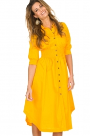 AnnaRita N |  Dress with smocked waist Svea | yellow  | Picture 2