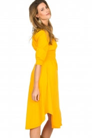 AnnaRita N |  Dress with smocked waist Svea | yellow  | Picture 4