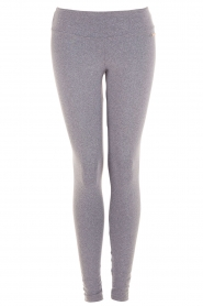Sports leggings Classic | grey