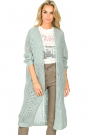 JC Sophie |  Crochet long cardigan Jo-Anne | light blue  | Picture 2