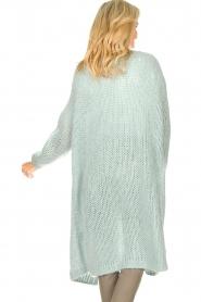 JC Sophie |  Crochet long cardigan Jo-Anne | light blue  | Picture 6