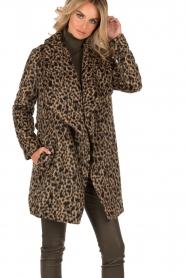 MICHAEL Michael Kors | Jas Leopard | camel/zwart  | Afbeelding 6
