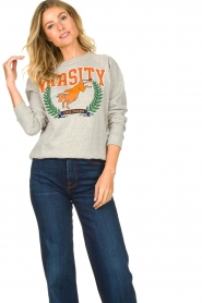Lois Jeans |  Sweater with print Bull | grey  | Picture 2