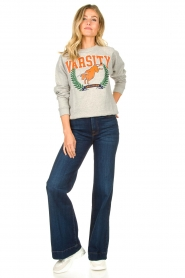 Lois Jeans |  Sweater with print Bull | grey  | Picture 3