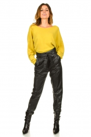 Ibana |  Leather pants Paula | black  | Picture 3