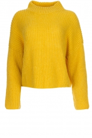 Be Pure |  Knitted turtleneck sweater | yellow  | Picture 1