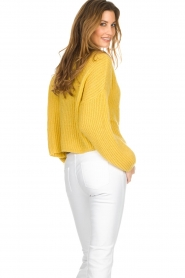 Be Pure |  Knitted turtleneck sweater | yellow  | Picture 5