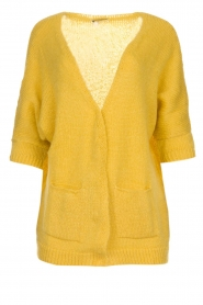 Be Pure |  Knitted cardigan Jasmijn | yellow  | Picture 1