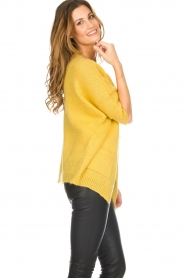 Be Pure |  Knitted cardigan Jasmijn | yellow  | Picture 5