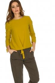 Aaiko |  Top Zippe | yellow  | Picture 2