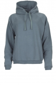 Be Pure |  Hoodie with logo on the back Sanne | blue  | Picture 1