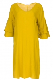 Aaiko |  Dress Key West | yellow  | Picture 1