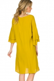 Aaiko |  Dress Key West | yellow  | Picture 5
