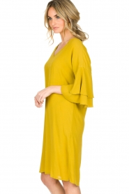 Aaiko |  Dress Key West | yellow  | Picture 4